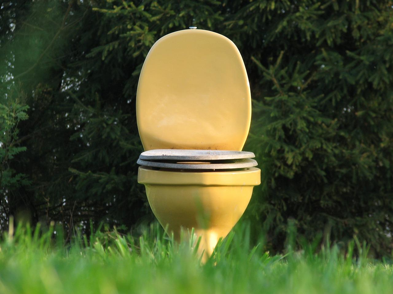 トイレ掃除の頻度で金運や運気が上がっていくの?
