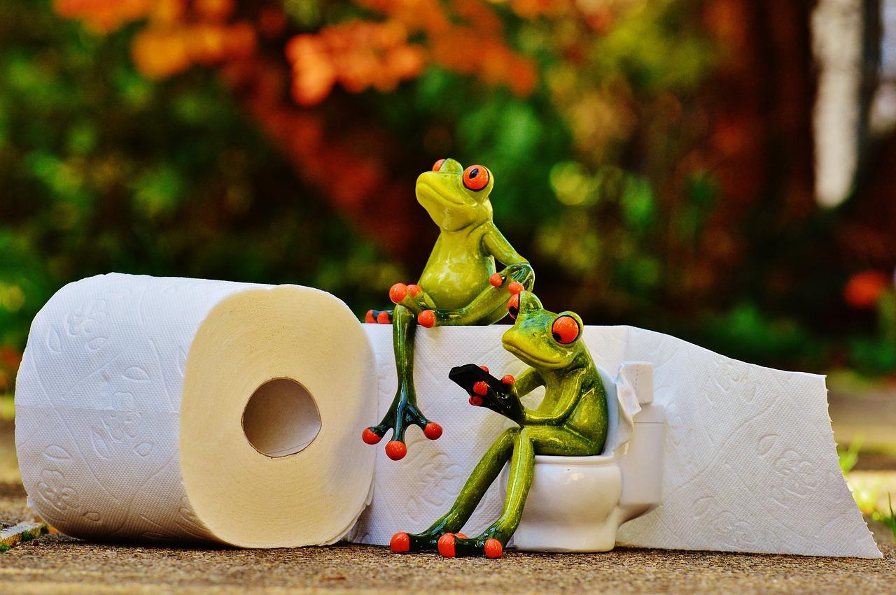 トイレ掃除のやり方で金運や運気が変わる?
