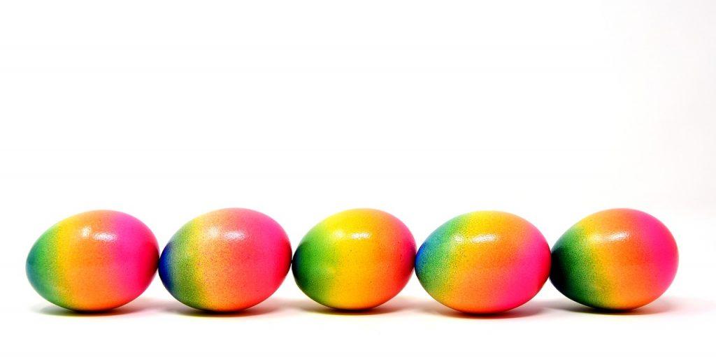 ゴキブリの卵について
