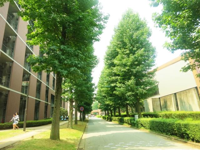 香川大学で希少糖の研究が行われている