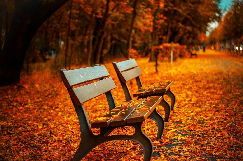 秋になると眠気がひどくなって体調を崩すのは何故?