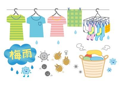 洗濯だけではダニは死なない!アイロンや熱湯処理が必要!