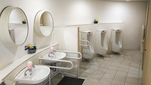 風水的に良いと言われるトイレ掃除の頻度や時間は?