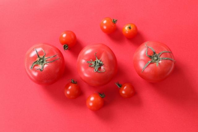 トマト味噌汁レシピを紹介!「簡単に」を重視して!